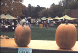 Pumpkins at outside festivities at WPPL's 90th birthday